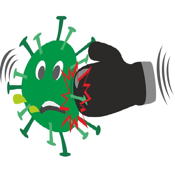Cómo fortalecer el Sistema Inmunológico con cannabis? post thumbnail