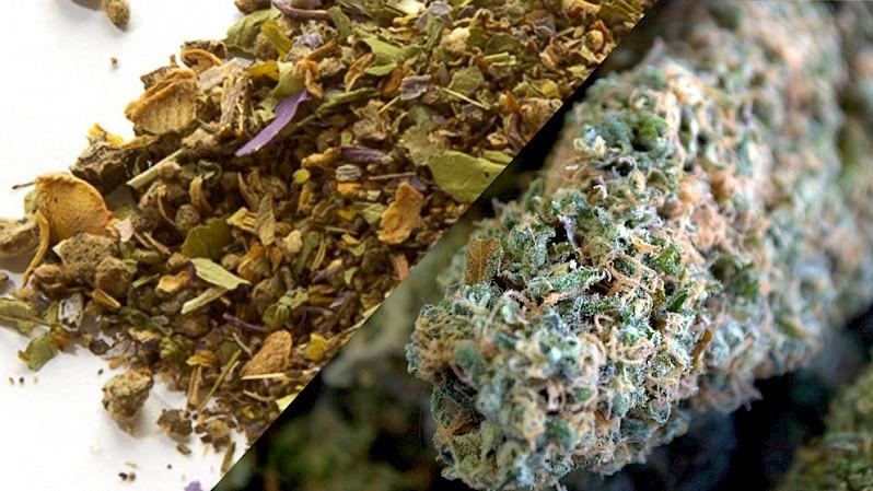 Todo sobre la Marihuana sintética post thumbnail