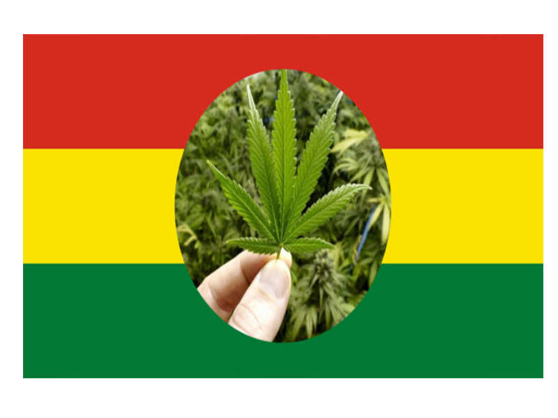 Niña boliviana mejora su salud gracias al cannabis medicinal post thumbnail